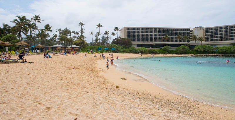 Book Today For a Turtle Bay Airport Shuttle