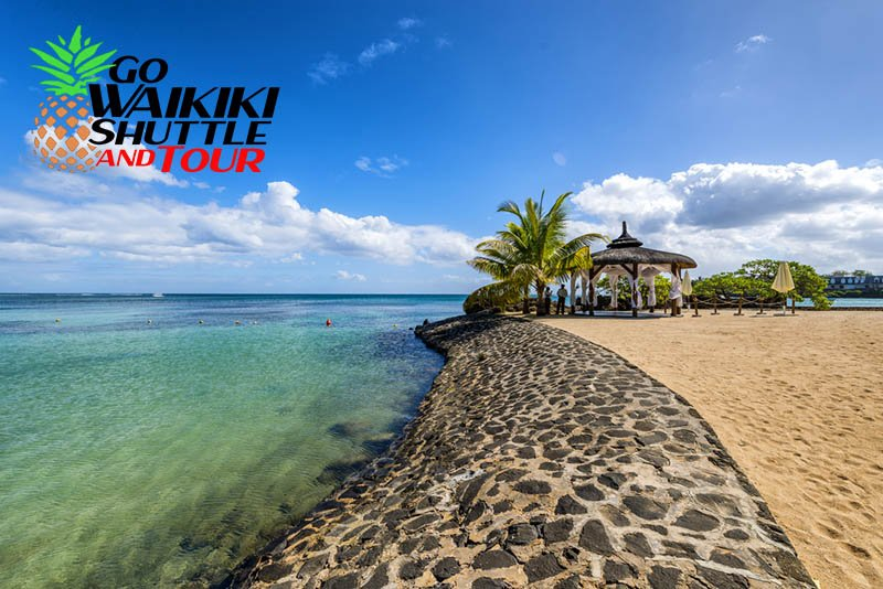 the best turtle bay airport shuttle service