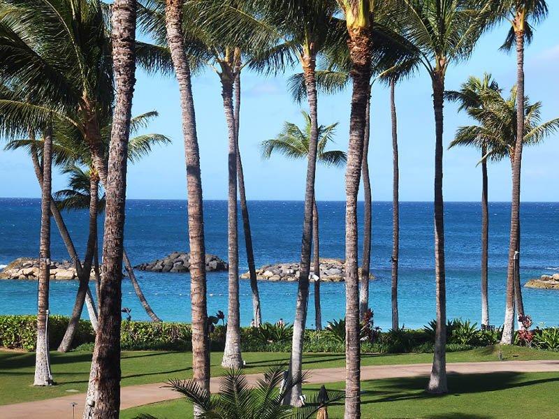 Airport Transfers in Hawaii